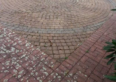 Pavers Before Cleaning & Restoration